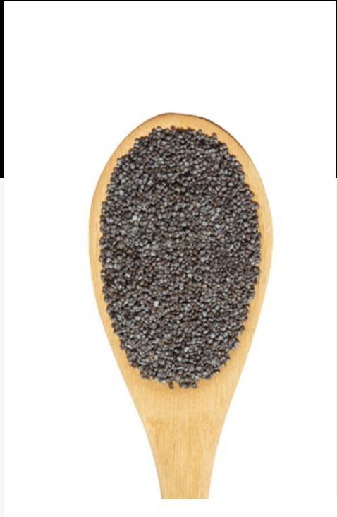 Graines de pavot 3